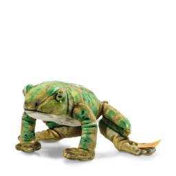 Froggy Frog 1.jpg