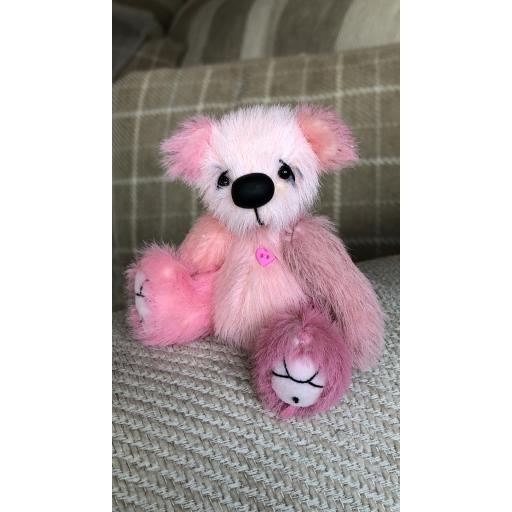 Clara Bear.png