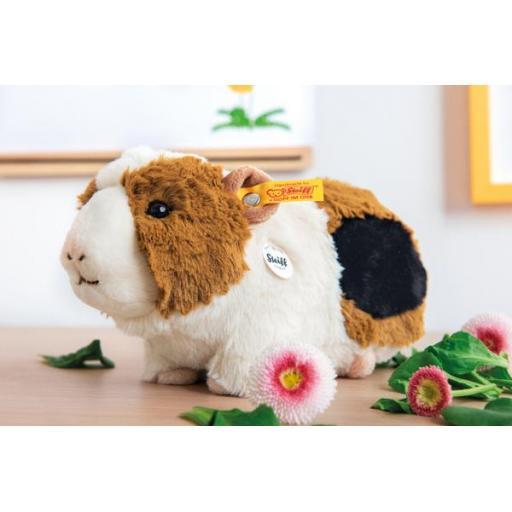 Dalle Guinea Pig 2.jpg