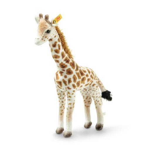 Magda Masai Giraffe