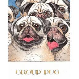 C846 Group Pug.png