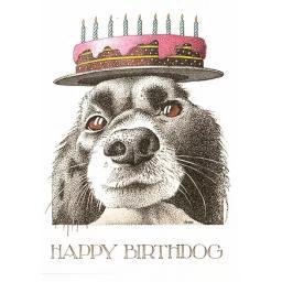 C845 happy Birthdog.png