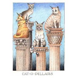 C854 Cat o Pillars.png