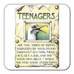 SDR055-Teenagers_coaster.jpg