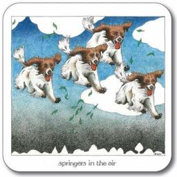 CSISDR098_Springers in the Air Coaster.jpg