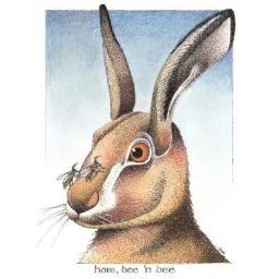 C818 Hare B'n'B.png