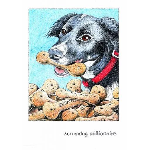 Scrumdog Millionaire
